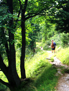 Immagine della notizia Andiam a passeggiar… in Val Sangone!