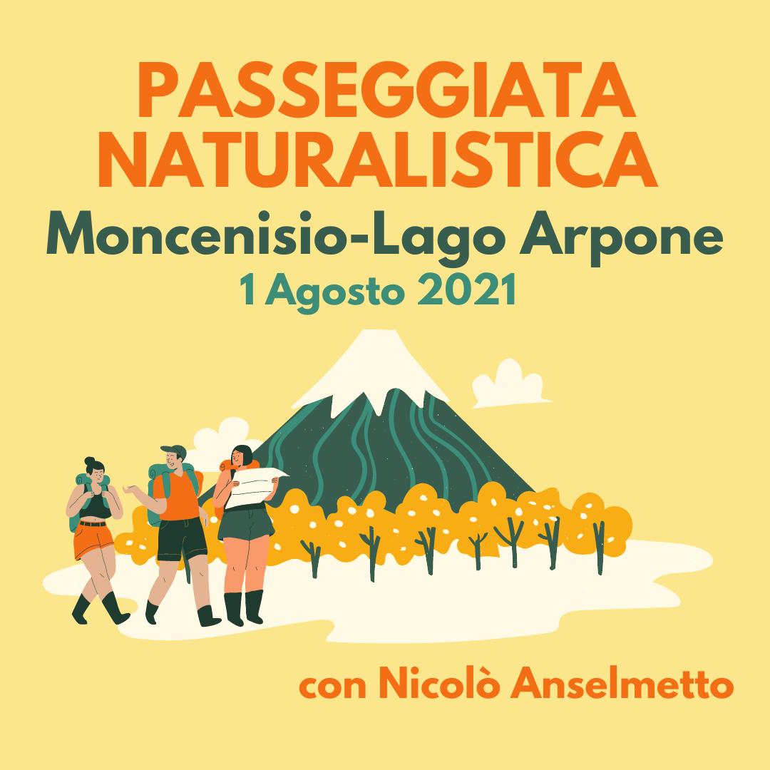 Immagine della notizia Passeggiata Naturalistica Moncenisio – Lago Arpone